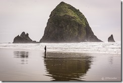 Cannon Beach SeaStack